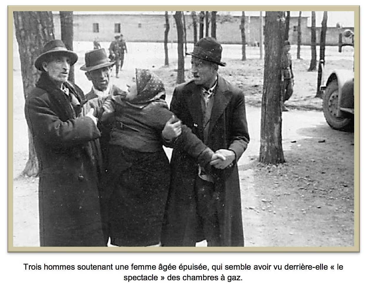ALBUM AUSCHWITZ pic of 3 men and a woman.jpg